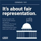 Census infogram on representation