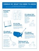 Census infogram on what you need to know